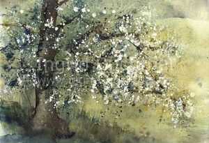 Frühling II 42 x 32 cm