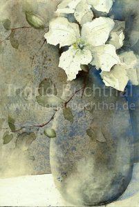 weiße Clematis I 32 x 42 cm